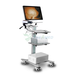 Medical Infrared Inspection Equipment for Mammary Gland YSSW3003