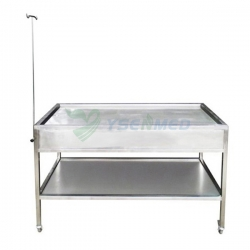 Animal Anatomy Table YSVET0516