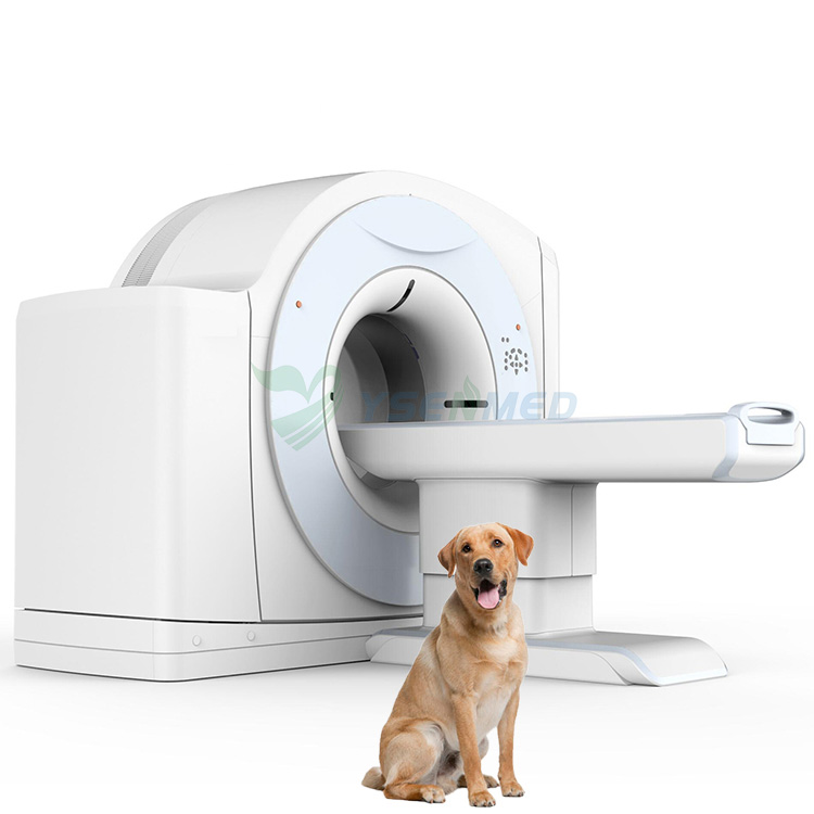 veterinary CT scanner